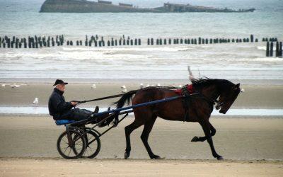Visiter la Normandie, que voir ?