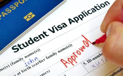 Comment demander un visa en ligne ?